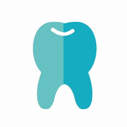 Dentist, elements, health, medical, tooth icon - Download on Iconfinder