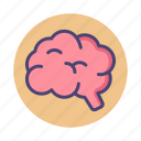 brain, brainy, mind, organ icon