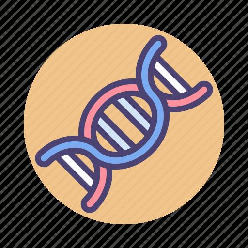 Chromosome, dna, gene, genetic icon - Download on Iconfinder