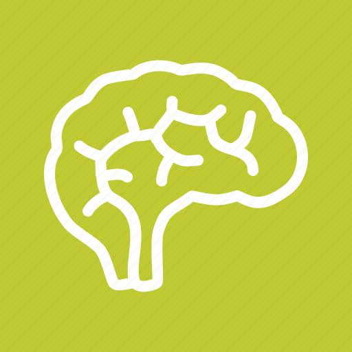 Brain, head, nervous, neuro icon - Download on Iconfinder
