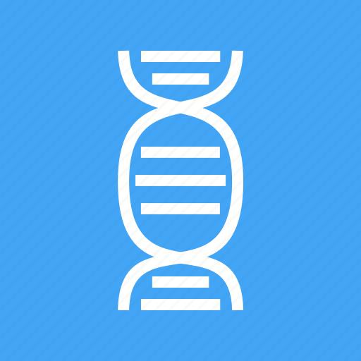 cell, dna, genes, inherit icon