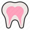 anatomy, hospital, medical, organ, tooth icon