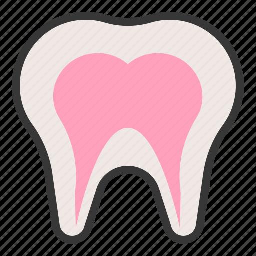 anatomy, hospital, medical, organ, tooth icon