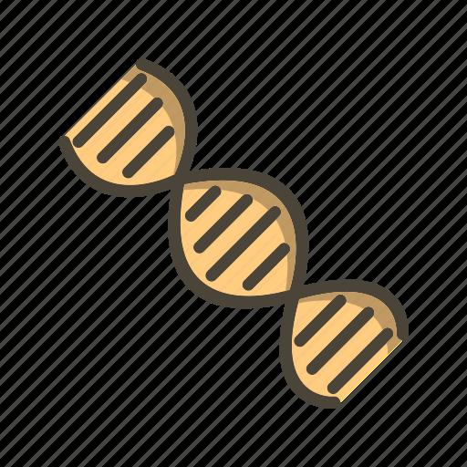 Dna, genetics, helix icon - Download on Iconfinder