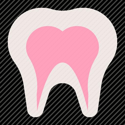 anatomy, dental, hospital, medical, organ, tooth icon