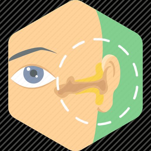 ear, injury, problem, treatment icon