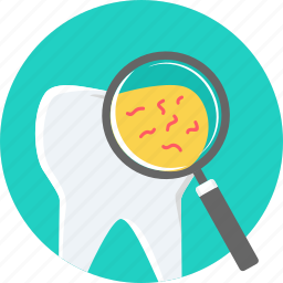 bacteria, dental, germs, hygiene, infection, teeth, tooth icon