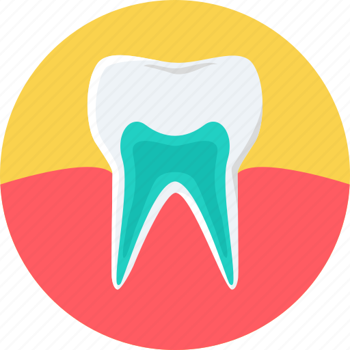 dental care, gum care, healthy, medical, strong, teeth, tooth icon