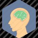 brain, head, human