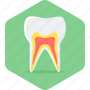 dental, dentist, dentistry, gums, stomatology, teeth, toothache icon