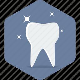 dental, dentistry, hygiene, stomatology, teeth, tooth icon