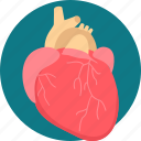 healthcare, heart, heart attack, heart care, surgery, treatment icon