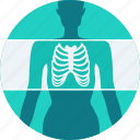 bones, skeleton, x-ray, xray, mri, examination, radiology icon