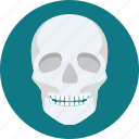 bone, bones, facebone, ray, scalp, skeleton, skull icon