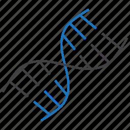 dna, gene, genetic, helix icon