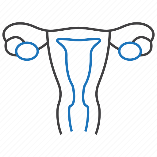 gynecology, reproduction, reproductive, uterus icon