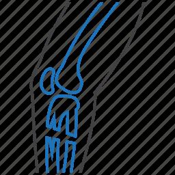 bone, leg, orthopedics icon