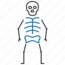bones, osteology, skeleton icon