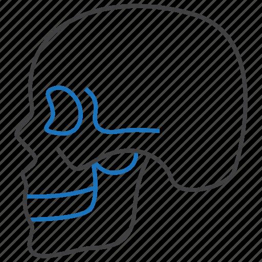 danger, death, skull icon