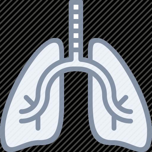 body, health, hospital, lungs, medical, organ icon