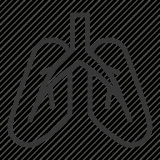 anatomy, hospital, internal organ, lung, medical, organ icon