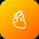 heart, life, organ, cardiology, breath, midical