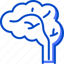 brain, health, human, medic, medical icon