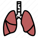 asthma, body, human, lung, organ, respiration icon