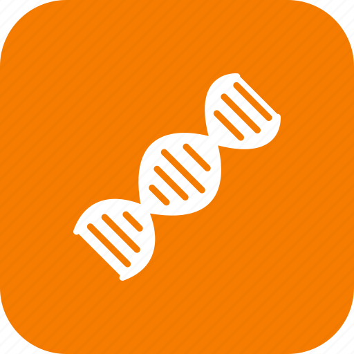 connection, dna, genetic, genome, helix, strand, structure icon