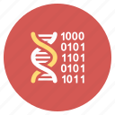 binary, dna structure, genetic, genetical code, helix, research, science icon