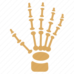 bones, fingers, hand, palm, phalanges, skeleton, xray image icon