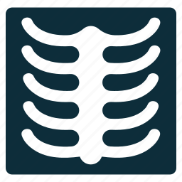 anatomy, diagnostic, fluorography, radiology, radioscopy, skeleton, xray photo icon