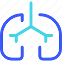 25px, iconspace, lungs icon