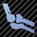anatomy, arm, bone, hand, human, joint, medical icon