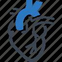 cardiology, cardiovascular, heart icon