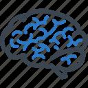 brainstorming, brain, neurosurgery, neuroscience