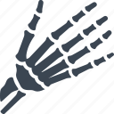 bones, hand, osteology icon
