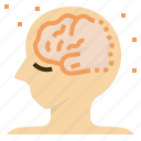 alzheimers, brain, dementia, disease, injury, neurodegenerative icon