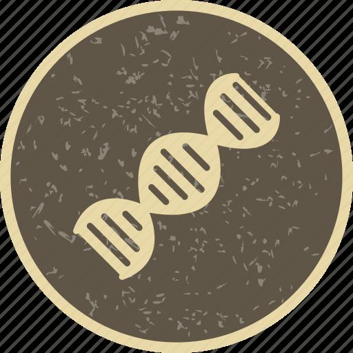 Dna, helix, genetics icon - Download on Iconfinder