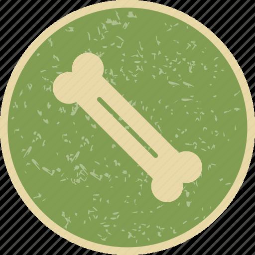 Bone, fitness, health icon - Download on Iconfinder