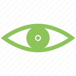 eye, eyes, watch icon