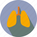 breath, lung, lungs, organs icon