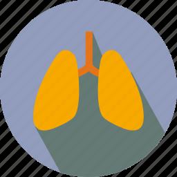 breath, lung, lungs, organs icon