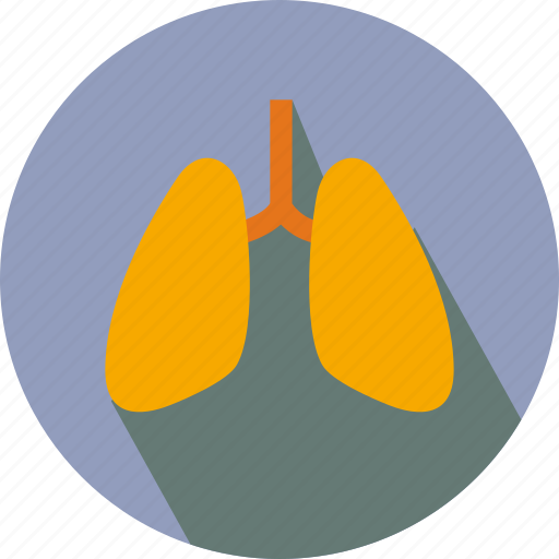 Breath, lung, lungs, organs icon - Download on Iconfinder