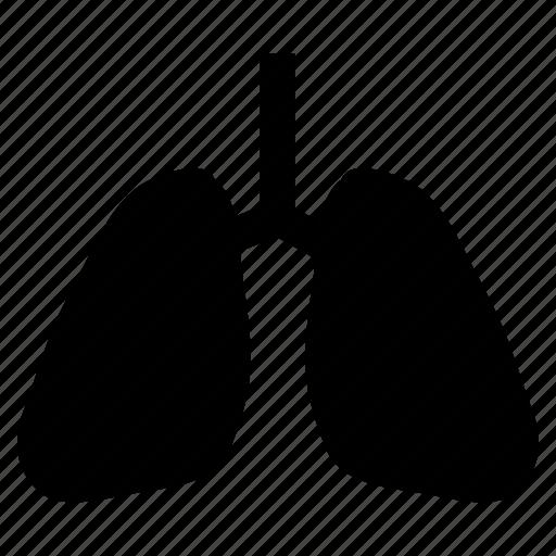 anatomy, breathe, lungs, pulmonary, pulmonologist, pulmonology, respiratory icon