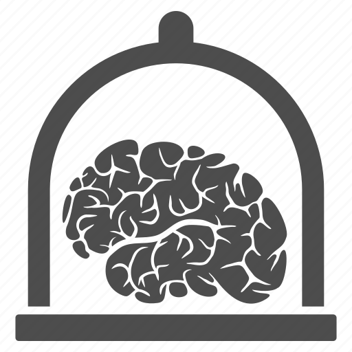 brain conservation, exposition, human, mind, museum, science, think icon