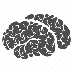 brain, brains, human organ, idea, memory, mind, think icon