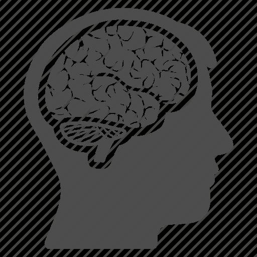brain, head, idea, memory, mind, think, thinking icon