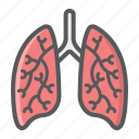 anatomy, healthcare, human, lungs, medicine, organ, pulmonary icon
