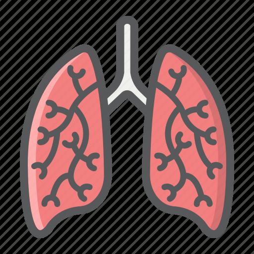 anatomy, healthcare, human, lungs, medicine, organ, pulmonary icon
